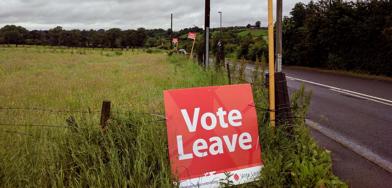 Vote Leave signs by the side of a road