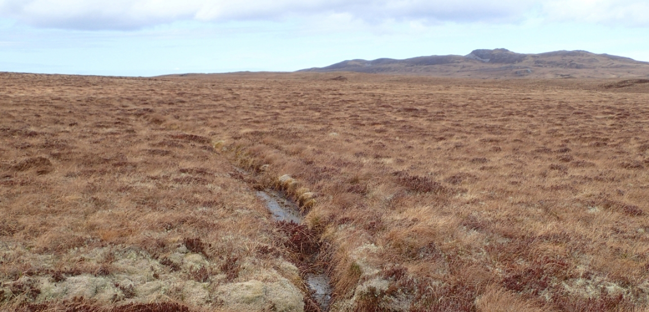 Junction of drainage ditches in the peatland of A' Mhoine, Scotland.