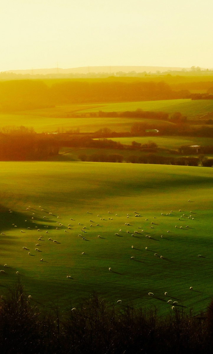 The rolling hills of England