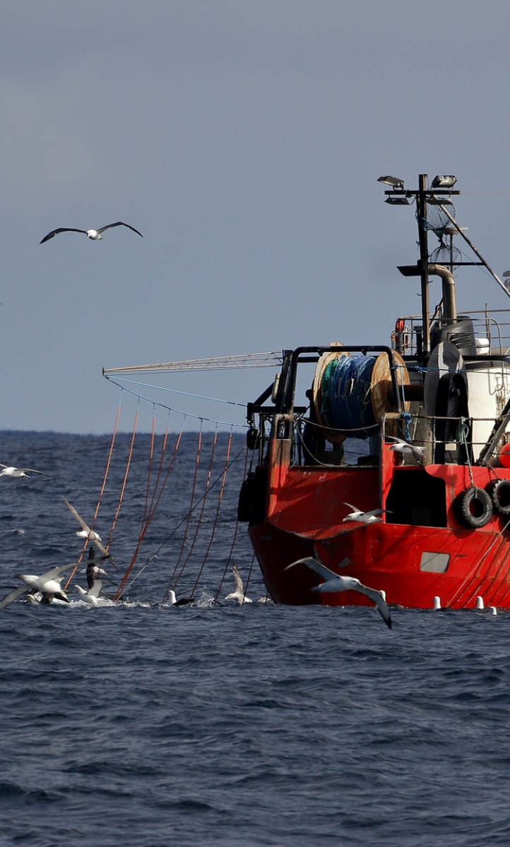 Fishing trawler surrounded by seagulls