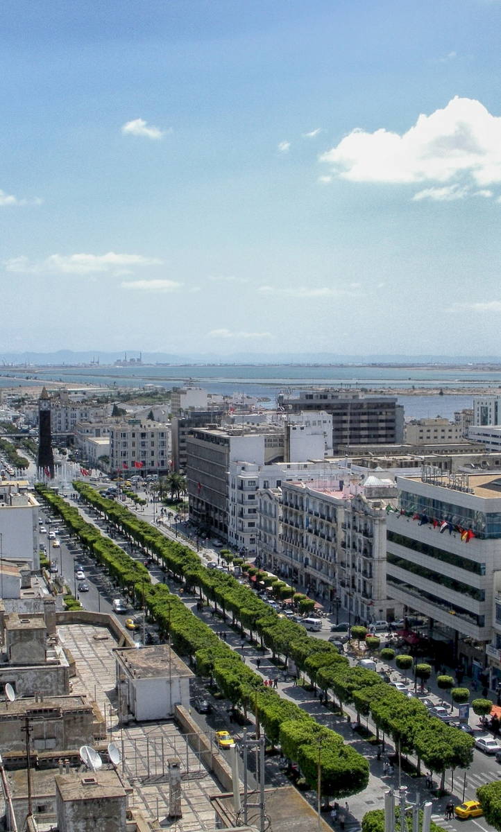 Aerial view of Avenue Habib Bourguiba,Tunis