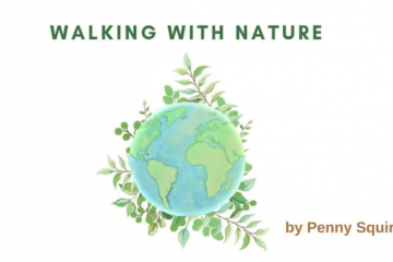 Walking With Nature cover